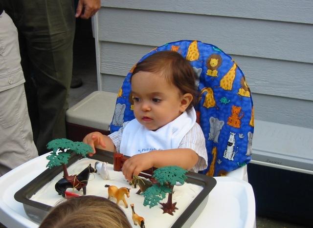 Collin's 1st Birthday